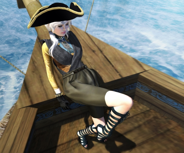 pirata fb2